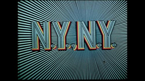 N.Y., N.Y. title shot